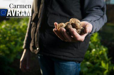 România este singura țară din UE care îşi îngroapă agricultura.