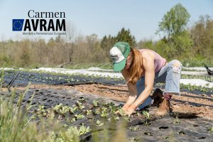 Tendinţe privind forţa de muncă din agricultură (Radio România Internațional)