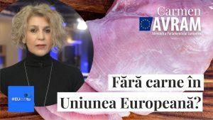 #EUestitu - Cum se naște o hotărâre europeană?