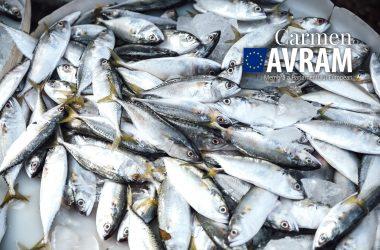 Raport esențial pentru sectorul de pescuit de la Marea Neagră adoptat în Parlamentul European