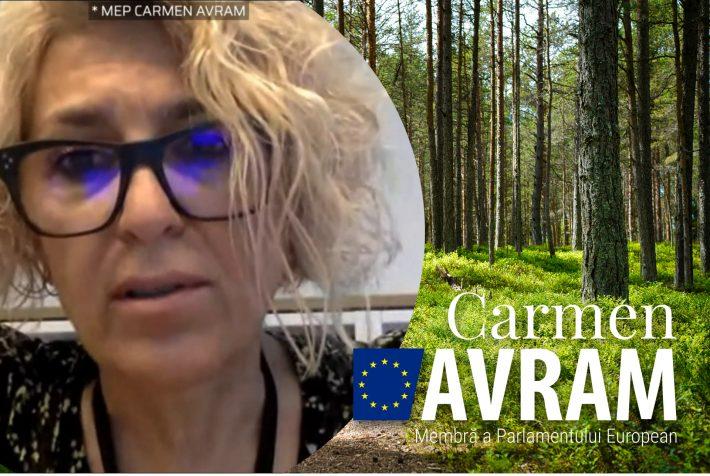 România are o singură soluție ca să scape de tăierile ilegale de lemn și o voi propune în viitorul raport privind Noua Strategie Forestieră a Uniunii Europene