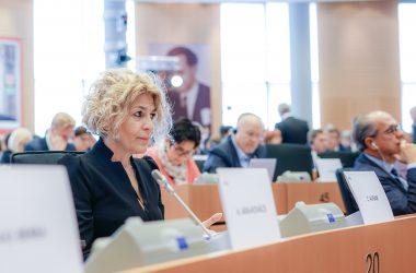 Carmen Avram – interpelare pentru Comisarul European pe Agricultură: Când veți face studiile de impact?